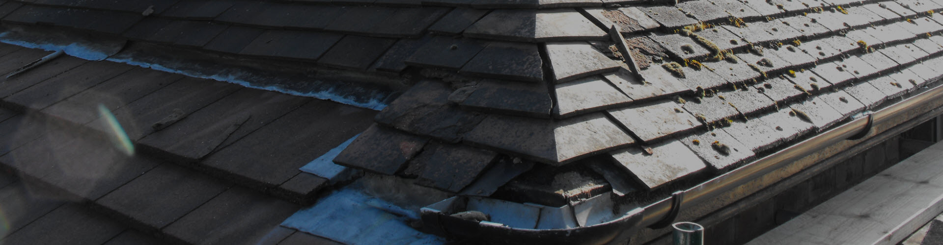 Defective Roof Discovered by a Building Survey